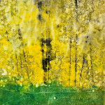 yellow-birches-print